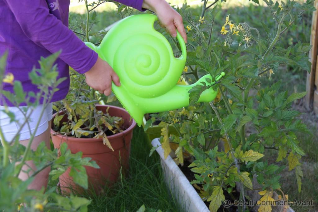 Arroser les tomates cerises avec son escargot !
