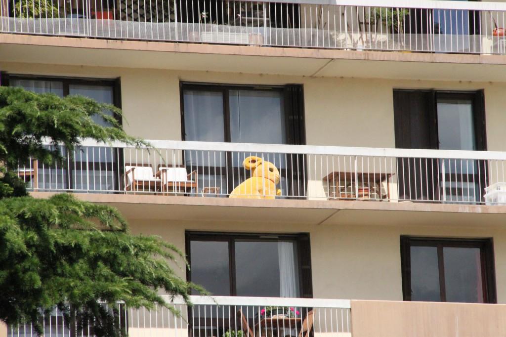 Aperçevoir un gros lapin sur un balcon !