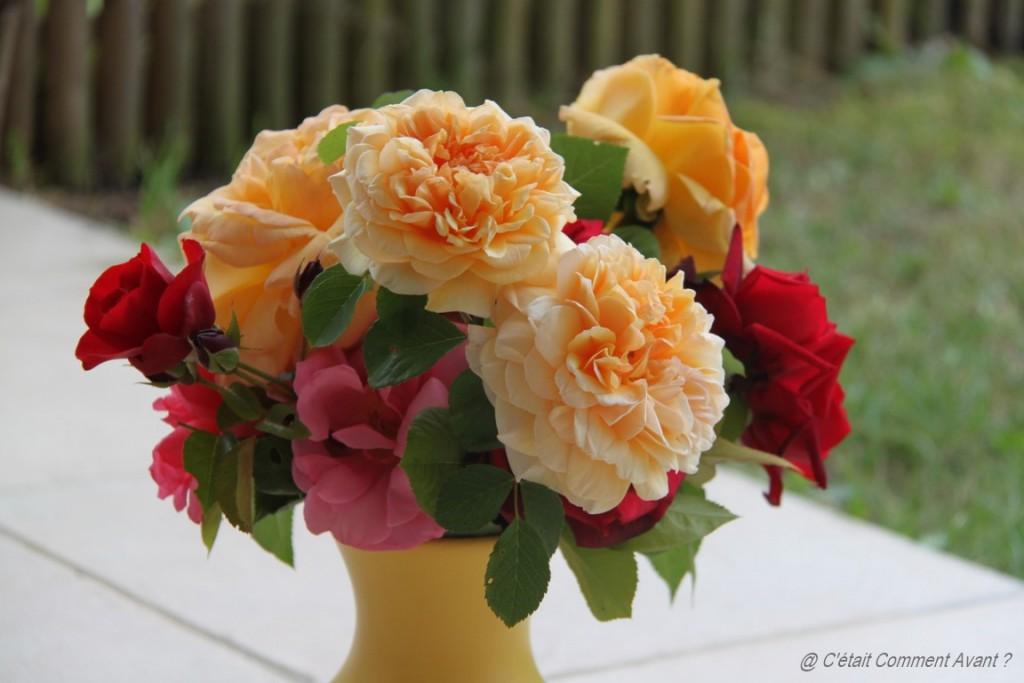 S'offrir des roses du jardin