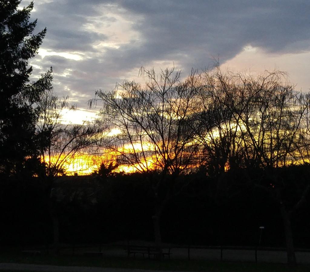 Admirer le ciel